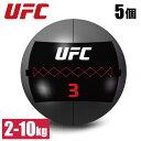 ウォールボール スラムボール ウエイトボール トレーニングボール 5個セット UFC 総合格闘技 フリーウエイト トレーニング 1kgきざみ 業務用 家庭用 オフィシャル UFC-FTWB 2kg 4kg 6kg 8kg 10kg