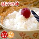 米ぬか 美味しい