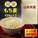 【メール便送料無料】H29年産 国産もち麦 420g×2(840g)※宅配便選択時送料追加※|大麦 ごはん 麦ご飯 胆汁酸ダイエット|s60