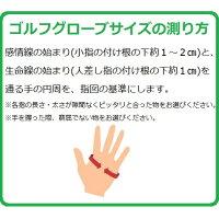 【日本郵便配送(4枚まで)】レディースキャロウェイゴルフグローブスタイルデュアル19JM両手用手袋CallawayStyleDualWomens19JM2019年モデル