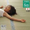国産 い草 上敷き カーペット団地間8畳(約340×340cm)...