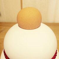 soil(ソイル・珪藻土)】KAGAMIMOCHIカガミモチS鏡餅