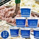 送料無料8種の自然派ジェラートイルカ印のジェラテリアデルフィーノギフトアイスクリーム
