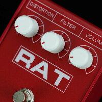 proco_rat2_red