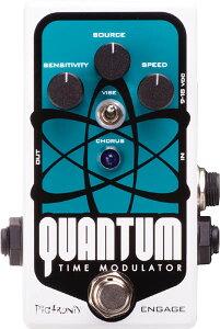 【エフェクター】PiGtRONiX Quantum Time Modulator