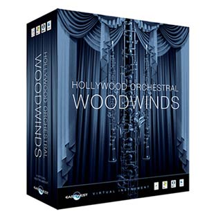 PCソフト, 音楽制作 EASTWEST Hollywood Orchestral Woodwinds Diamond Edition USB HDD