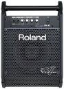 Roland PM-10 [V-Drums専用モニター] 【ポイント5倍】