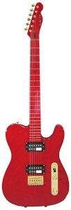 【エレキギター】SCHECTER TR-L-PT-LTD/ARD [Limited Model]