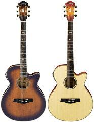 【エレクトリック・アコースティックギター】Ibanez AEG40II 【本数限定生産完了超特価】