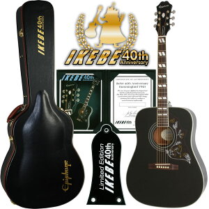 "Epiphone by Gibson Limited Edition Hummingbird PRO (Ebony) ""IKEBE 40th Anniversary Special Package"" 【数量限定で太陽光充電チューナー""TASCAM TC-1S""プレゼント】 【エピフォン2015カレンダー・プレゼント】"