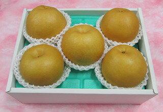 長野県産 南水梨 約 2.5kg(5〜6個) <送料 ・ 消費税込!他ギフト対応可>