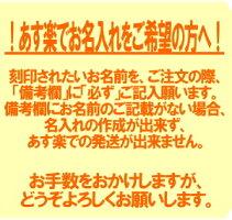 名入れ無料三菱鉛筆ジェットストリームプライムノック式3色ボールペンライトピンクSXE3-3000-05