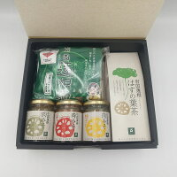 岩国蓮根麺セット01(うどん)