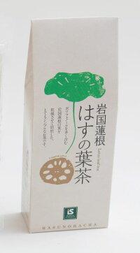 岩国蓮根はす茶