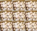 【予約販売】【数量限定】【料亭ご用達】幻のじゃがいも!白いも(白土)白土馬鈴薯5KG 一般店...