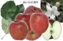【11月下旬ごろより発送】【予約特別価格】【数量限定】【訳あり】霜降りりんご!信州中野産 甘〜いあいかの香り 約7k:ただし暖かいとき・地域によりクール代210円加算されます