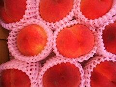 数に限りがあります!【予約販売】糖度14以上桃とネクタリンの美味しさいっぱい!長野産 ワッ...