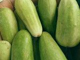 7月下旬より発送予定!寒暖差のある漬物の本場から!長野産 白瓜(白うり) 約5k(5本から15本)