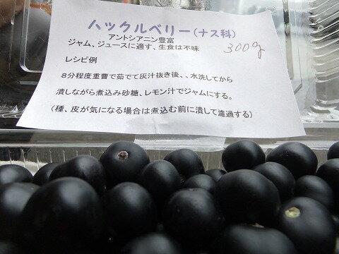 フルーツ・果物, ブルーベリー 9 250g
