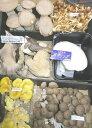 キノコの街!信州中野より朝採り新鮮発送!一味違います!長野産 おまかせ きのこ 6種以上セット((高級キノコ 黒あわび茸入り入り)