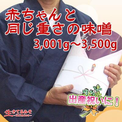 赤ちゃんと同じ重さの味噌3001g〜3500g