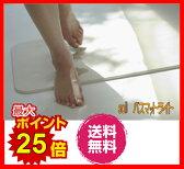 Soil ソイル バスマット ソイルバスマット ライト 珪藻土 足拭きマット 日本製 新生活応援 ギフト ラッピング無料