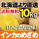 【新じゃが 予約販売】じゃがいも 【 インカのめざめ 10kgセット 北海道産 】 煮崩れ少なく甘みのある小ぶりな品種