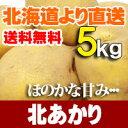 【送料無料】北海道 直送 北あかり5kg野菜セット【楽ギフ_のし宛書】【 贈り物 】【 ギフト 】 - 北海道美食生活