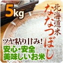 北海道米ななつぼし北海道新冠産5kg(袋入り) 贈り物 ギフト 内祝