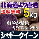 じゃがいも北海道産シャドークイーン5kgセットお中元贈り物内祝いお返しギフト送料無料バーベキューBBQ
