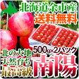 さくらんぼ 南陽 2Lサイズ2パック(各500グラム)送料無料 超高級品種 北海道産果物 フルーツ 贈り物 内祝い お返し ギフト
