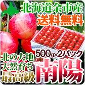 お中元 さくらんぼ 南陽 2Lサイズ2パック(各500グラム)送料無料 超高級品種 北海道産果物 フルーツ 贈り物 内祝い お返し ギフト