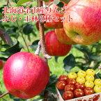 りんご ふじ・王林2種ミックス いずれか計3kg 北海道余市産 (8〜12個) 有機質肥料使用 エコファーマー認定農園のリンゴ 果物 フルーツ 贈り物 内祝 お返し ギフト