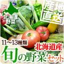 【北海道産 野菜 詰め合わせ】北海道から産地直送!一番美味しい『旬』野菜!農家厳選のおまか...