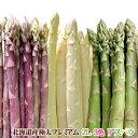 【5月中旬発送予定】アスパラガス 北海道産 アスパラ 3色 ( グリーン ホワイト パープル )2L 合計1kg 送料無料