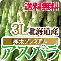 グリーンアスパラガス 北海道産 極太3Lサイズ 送料無料 1kg アスパラ