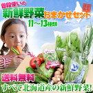 旬の野菜セット北海道産おまかせ詰め合わせ11~13種お中元贈り物内祝いお返しギフト送料無料バーベキューBBQ