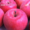【予約販売】りんご早生ふじ(わせふじ) 10kg 産地直送 葉とらずリンゴ(32〜40個) 北海道 余市産 有機質肥料エコファーマー認定農園 果物 フルーツ 贈り物 内祝 お返し ギフト 秋の味覚