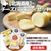 北海道産チーズバラエティセットB贈り物内祝いお返しギフト送料無料