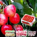 ギフト 南陽 2Lサイズ 500g さくらんぼ 超高級品種 北海道産果物 フルーツ 贈り物 内祝 お ...