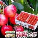 ギフト さくらんぼ 南陽 2Lサイズ 2パック ( 各500グラム ) 超高級品種 北海道産果物 フ ...