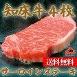 北海道産 知床牛 サーロインステーキ 父の日 肉 贈り物 内祝い お返し ギフト 送料無料 バーベキュー BBQ