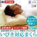 いびき 枕 まくら 抗菌・防臭加工カバー付き 【送料無料】