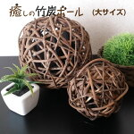 竹炭ボール大