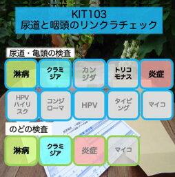 【送料無料】KIT103 アイラボの「尿道と咽頭のリンクラチェック」【あす楽対応】検査項目:淋病、クラミジア、炎症
