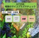 【送料無料】KIT 206 アイラボの「咽頭のマイコプラズマチェック」【あす楽対応】検査項目:マイコプラズマ2種、ウレアプラズマ2種、咽頭炎