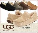 送料無料 UGG MENS Ascot アグ メンズアスコット シープスキン カジュアルシューズ スリッポン 5379-5775 /正規品取扱店舗/ so1