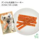 デンタル乳酸菌ジャーキー ささみ(1本×24袋) | 犬 犬用 無添加おやつ デンタルケア 口腔内ケア 歯磨き ササミジャーキー イリオスマイル