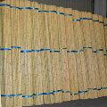 白竹(さらし竹)2メートル5分1束(120本入り)