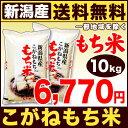 新潟県産 もち米 こがねもち米 白米 27年産 10kg(5kg×2袋)【送料無料(北海道・九…
